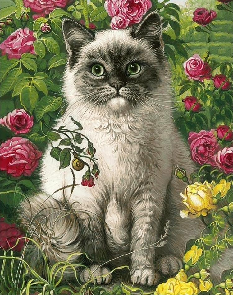 букет фотообои коты с цветами уйдите из-под дождя