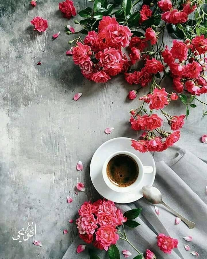 Цветы картинки кофе