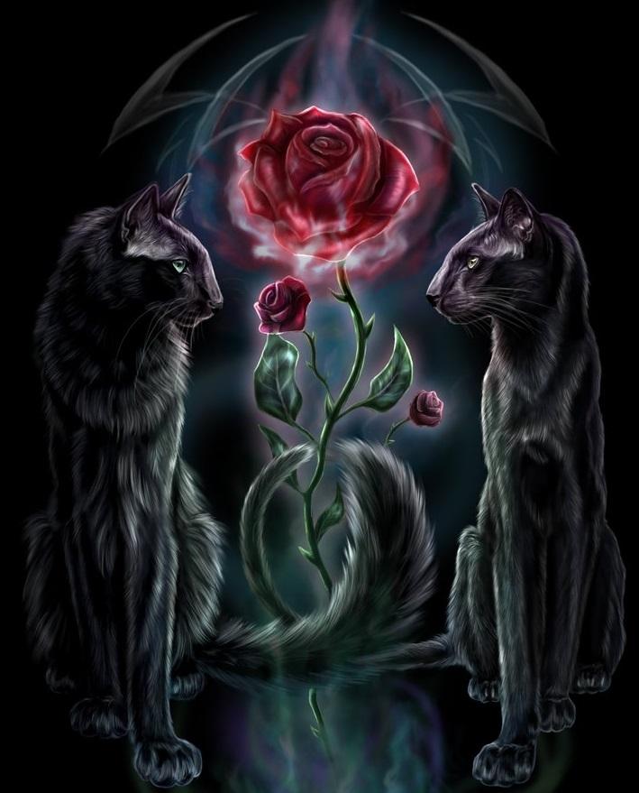 Купить картину по номерам Черные кошки (GX4177) - выгодная ...