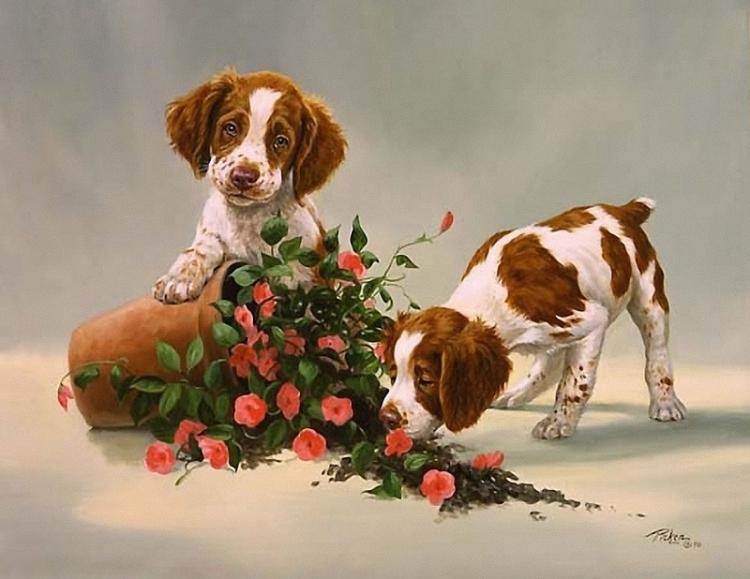 Открытки с изображением собак, февраля внуку
