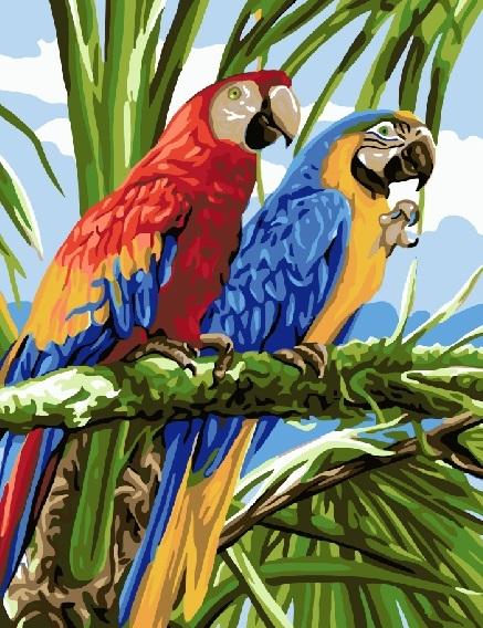Купить картину по номерам Тропические попугаи (GX22339 ...