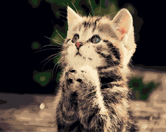 картинка милый котенок