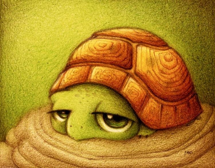 Смешные и милые картинки животных нарисованные, смешные надпесью