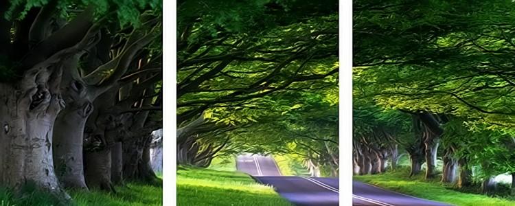 """Купить картину по номерам """"Арка из деревьев"""" на ..."""