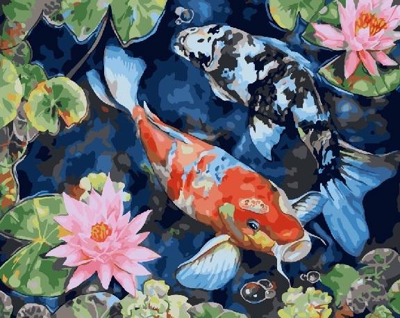 Купить картину по номерам Декоративные рыбки (GX25847 ...